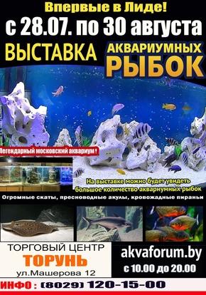 Выставка аквариумных рыбок