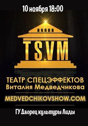 Театр Спецэффектов Виталия Медведчикова