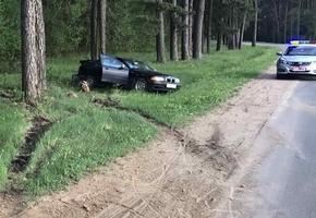 Под Лидой BMW въехал в дерево. Водитель госпитализирован
