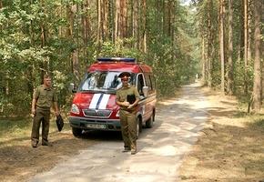 Уже в апреле в Гродненской области начались первые запреты на посещение леса: Сморгонский район, с пятницы — Гродненский