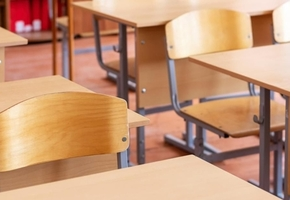 В Лиде у лицеистки во время занятий преподаватель выявил насвай