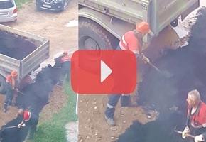 Технология укладки асфальтного покрытия пешеходной дорожки в Лиде вызывает сомнения относительно качества