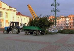 В Лиде произвели демонтаж городских праздничных ёлок