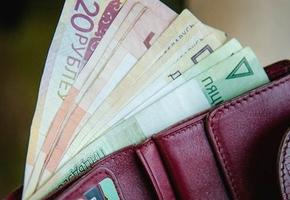 В Беларуси выросло число организаций, где платят меньше «минималки». Среди них — лидские организации