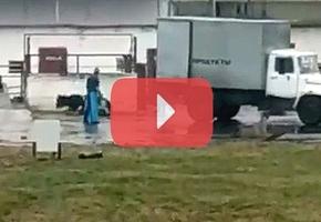 В Лиде работники предприятия прицепили животное к грузовику и жестоко тащили его через забор и по асфальту
