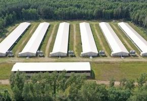 Завод по переработке мяса индейки под Лидой пока продать не получается. Бывший владелец пытается вернуть вложенные ресурсы