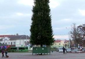 К праздникам в Лиде установят всего 7 ёлок. Две в центре города, пять — в микрорайонах