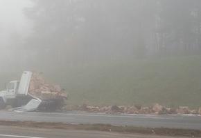 На трассе М6 в ДТП попал грузовик с яйцами