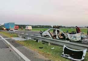 На М6 столкнулись фура и Mercedes с пьяным водителем: в легковушке погибли четверо, дальнобойщик получил 6,5 года