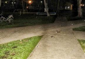 Пьяный мотоциклист 9 мая сбил ребенка в городском парке. Разыскиваются свидетели