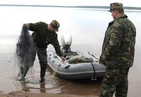 За 7 кг рыбы житель Лиды может лишиться свободы на 3 года