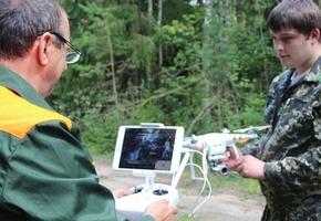 За лесами в регионе будут следить дроны