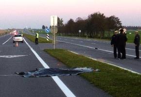 На М6 велосипедист не уступил и погиб в ДТП