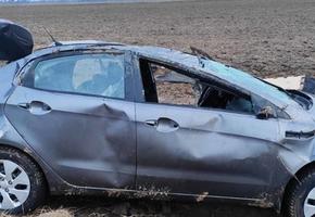На М6 Kia угодил в кювет и перевернулся. Ремни безопасности, возможно, спасли водителя и пассажира от более тяжёлых травм