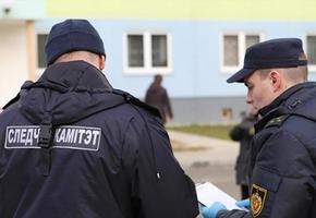 СК проводит проверку по факту пожара с двумя погибшими в Лидском районе