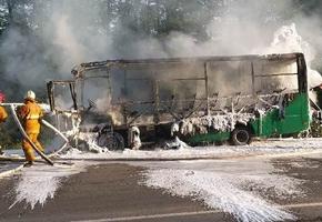 Пассажирский автобус сгорел на трассе М6 в Лидском районе