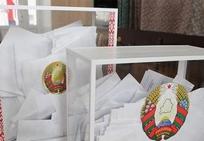 Выборы в депутаты местных Советов депутатов состоялись. Кто из лидчан стал членом областного Совета?