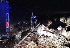 На дороге «Лида — Липнишки» микроавтобус врезался в гужевую повозку