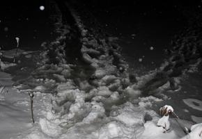 В Вороновском районе мужчина провалился под лёд. Его спасли рыбаки и спасатели