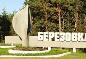 Жительница Берёзовки взяла около 27000 рублей у «партнёров» на открытие бизнеса, но история закончилась в милиции