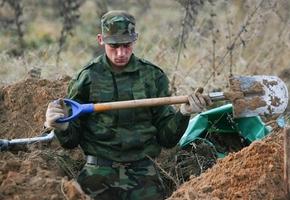 В лесу в районе ул. Рыбиновского ведутся раскопки. Разыскиваются останки партизан