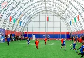 Сколько стоит 1 час аренды нового мини-футбольного манежа в Лиде?