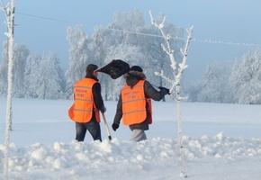 В Лиде волонтёры будут помогать с уборкой снега