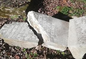 Милиция выяснила, кто разгромил кладбище в Лиде