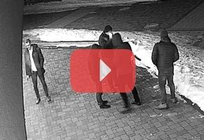 Ночной клуб «Маяк» готовит заявление в суд на парня, у которого 24 февраля произошёл конфликт с милицией